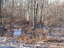 Off Hicklen Ridge Rd, Snow Shoe, PA 16874