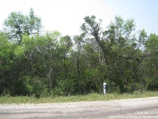 County 2801 Rd Lot 4 Mico, TX 78056