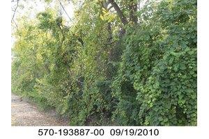 Lazar Rd, Grove City, OH 43123