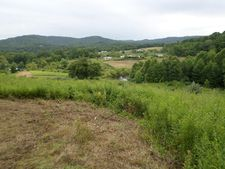 671 Woods Ferry Rd, Victor, WV 25938