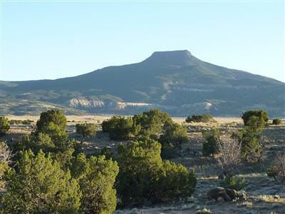 1 Vicinity of Abiquiu Lk Abiquiu, NM 87510