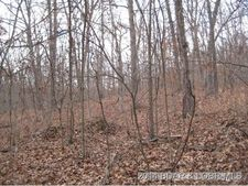 20 Acres On Unnamed Rd, Stover, MO 65078