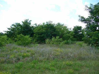 Lot 49 Oak Grove Dr, Necedah, WI