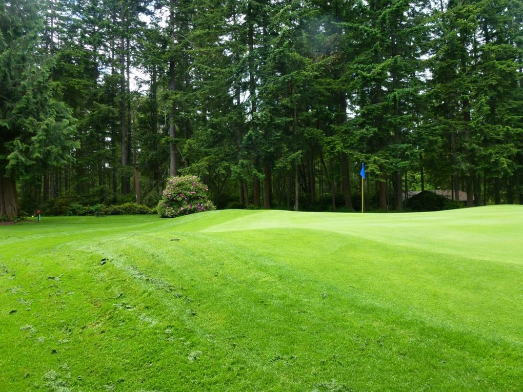 Property Tax Island County Washington