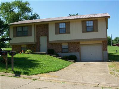 111 Swan Dr, Park Hills, MO
