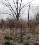 21277 Babbie Rd, Andalusia, AL 36421