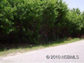 Bass Ave, New Smyrna Beach, FL 32169