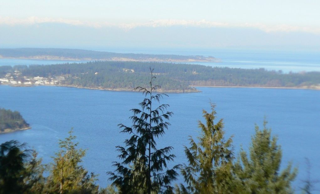 2 spring hl orcas island wa 98245 land for sale and for Homes for sale orcas island wa