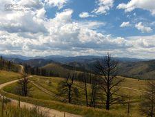 151 Sheep Mountain Ct, Livermore, CO 80536