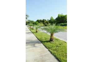 8605 SE Pinehaven Ave, Hobe Sound, FL 33455
