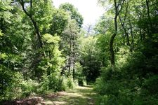 Winding Stairs Rd, Linville Falls, NC 28647