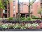 6711 Park Heights Avenue Unit: 411, Baltimore, MD 21215