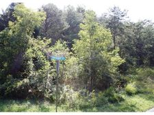 Lot 1 Pheasant Ct, Sevierville, TN 37876