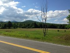 Cutting Rd, Lewis, NY 12950