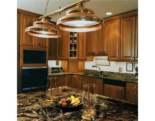 1709 pontiac trl ann arbor mi 48105 for V kitchen ann arbor