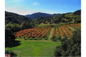 Photo of 28980 Newton Canyon Rd,Malibu, CA 90265