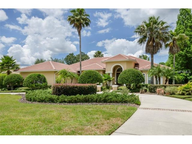 18124 longwater run dr tampa fl 33647 home for sale and real estate listing