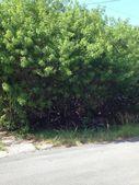Plantation Ave, Islamorada, FL 33070