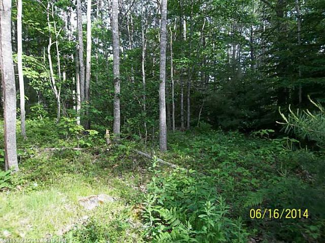kennebec rd machiasport me 04655 land for sale and