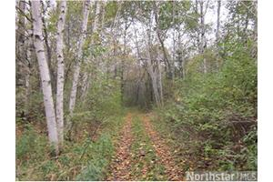 X 360th St, Shafer Twp, MN 55084