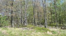 458 Er 11 Crooked Stick Ln, Hazel Township, PA 18202