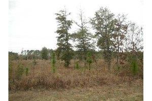 Highway 331-24 Acres Lot N, Defuniak Springs, FL 32433