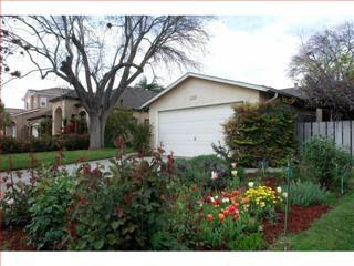 1157 Huntingdon Dr San Jose, CA 95129