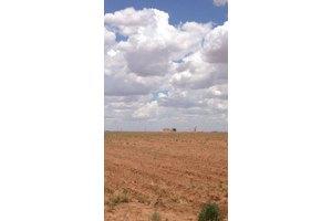 Farm Road 2641, Lubbock, TX 79415
