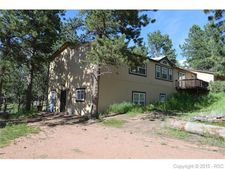 13264 County 1 Rd, Florissant, CO 80816