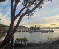 802 Deer Harbor Rd, Orcas Island, WA 98245