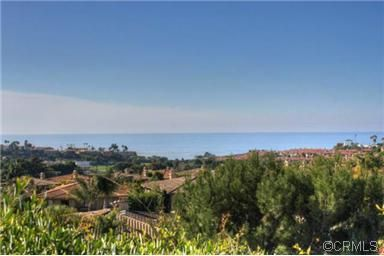 38 Corniche Dr Unit D Dana Point Ca 92629 Public