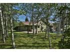 1221 Baldy View Dr, Hailey, ID 83333