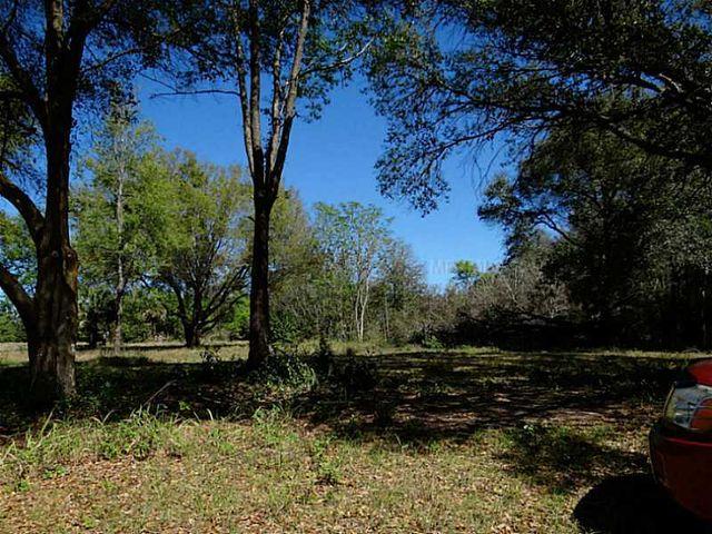 Earlwood, Tangerine, FL 32776