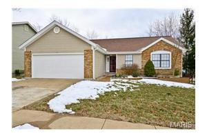 1010 Oakwood Farms Ln, Ballwin, MO 63021