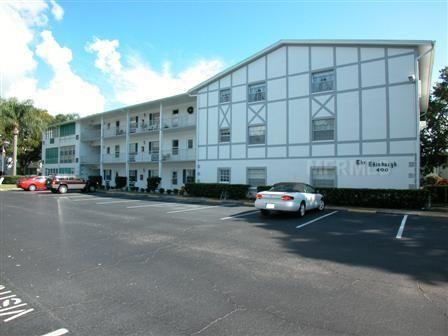 300 Glennes Dunedin FL Douglas Arms MLS#U8054392